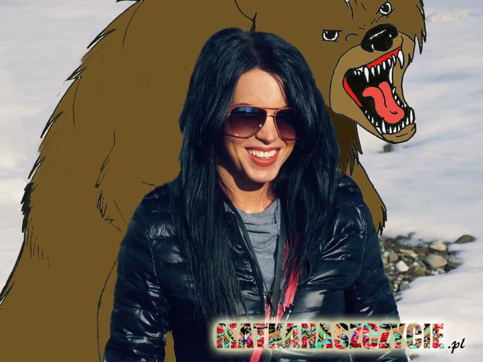 Atak niedźwiedzia
