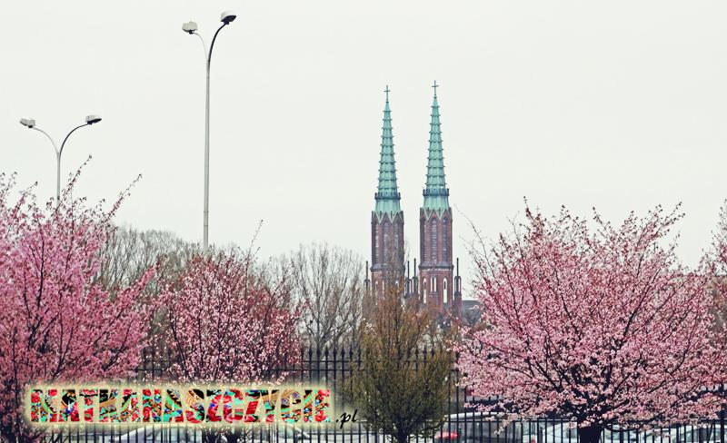 Warszawa wiosną