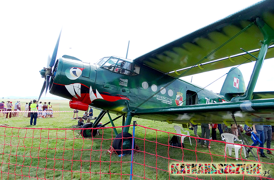 Wiedeńczyk samolot