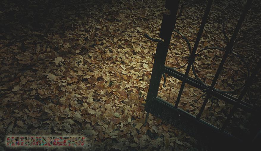 Brama do jesieni